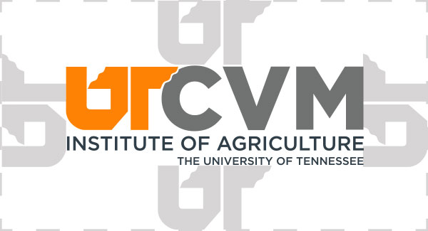 Example of clear space rule around UT CVM logo